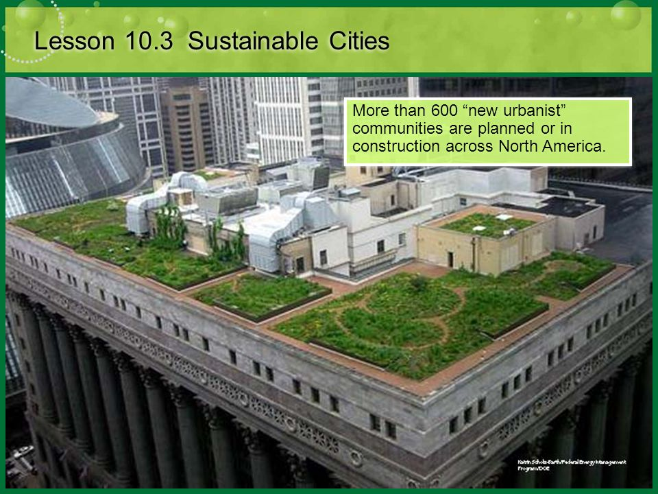 Lesson 10.3 Sustainable Cities