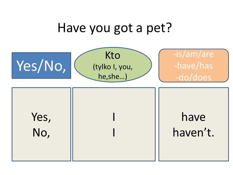 Yes/No, Have you got a pet Yes, No, I have haven't. Kto -is/am/are