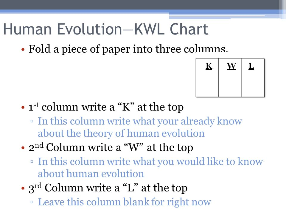 Human EvolutionKwl Chart  Ppt Video Online Download