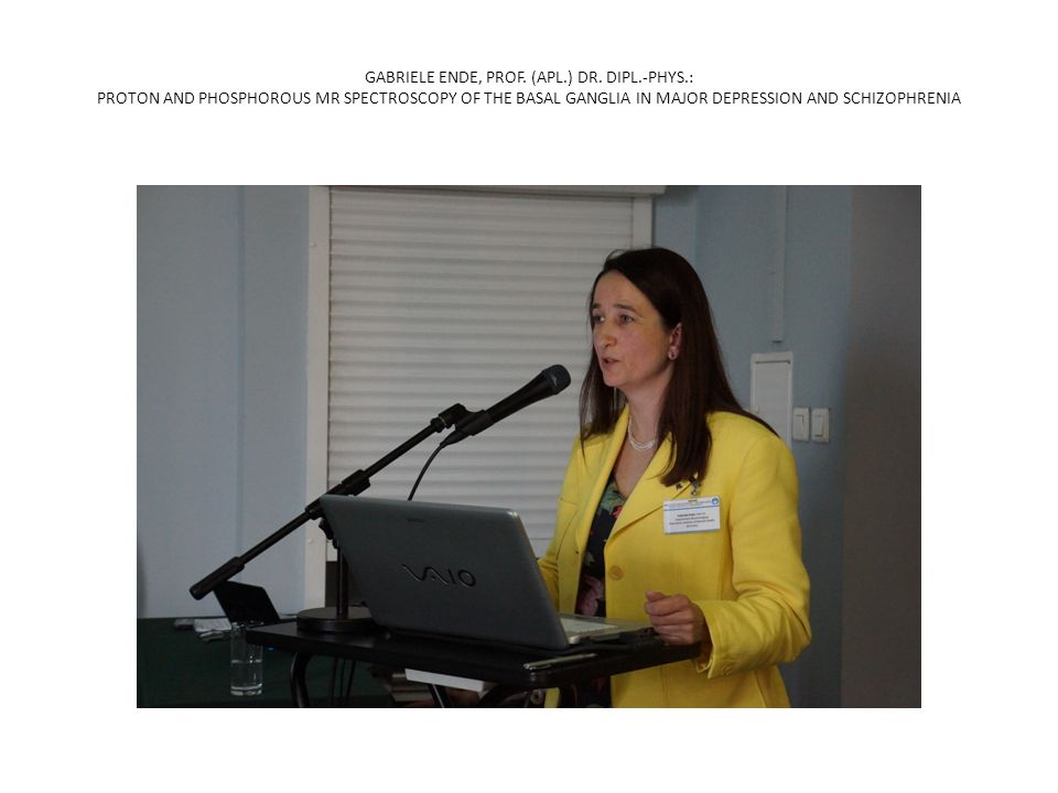 GABRIELE ENDE, PROF. (APL. ) DR. DIPL. -PHYS