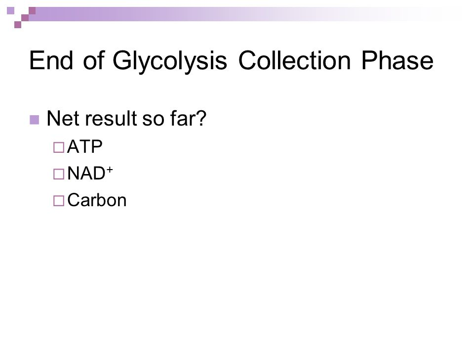 End of Glycolysis Collection Phase