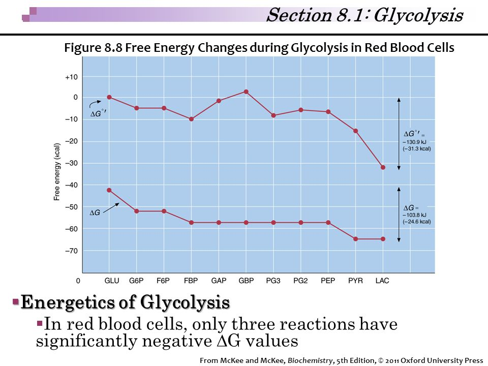 Energetics of Glycolysis