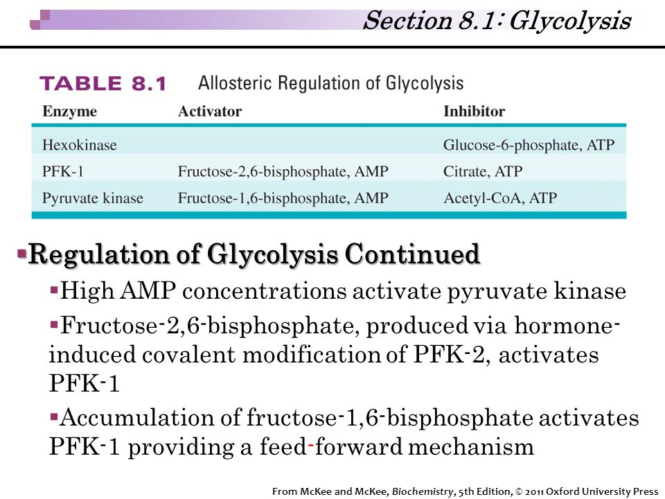 Regulation of Glycolysis Continued