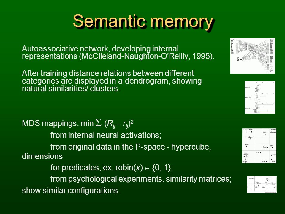 Semantic memory Autoassociative network, developing internal representations (McClleland-Naughton-O'Reilly, 1995).