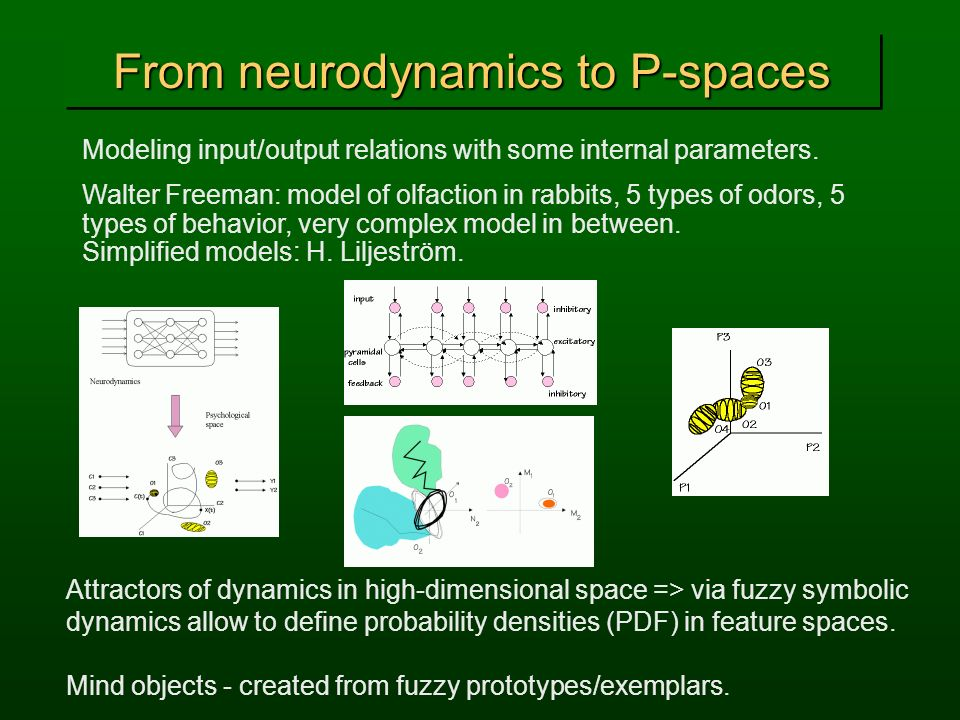 From neurodynamics to P-spaces