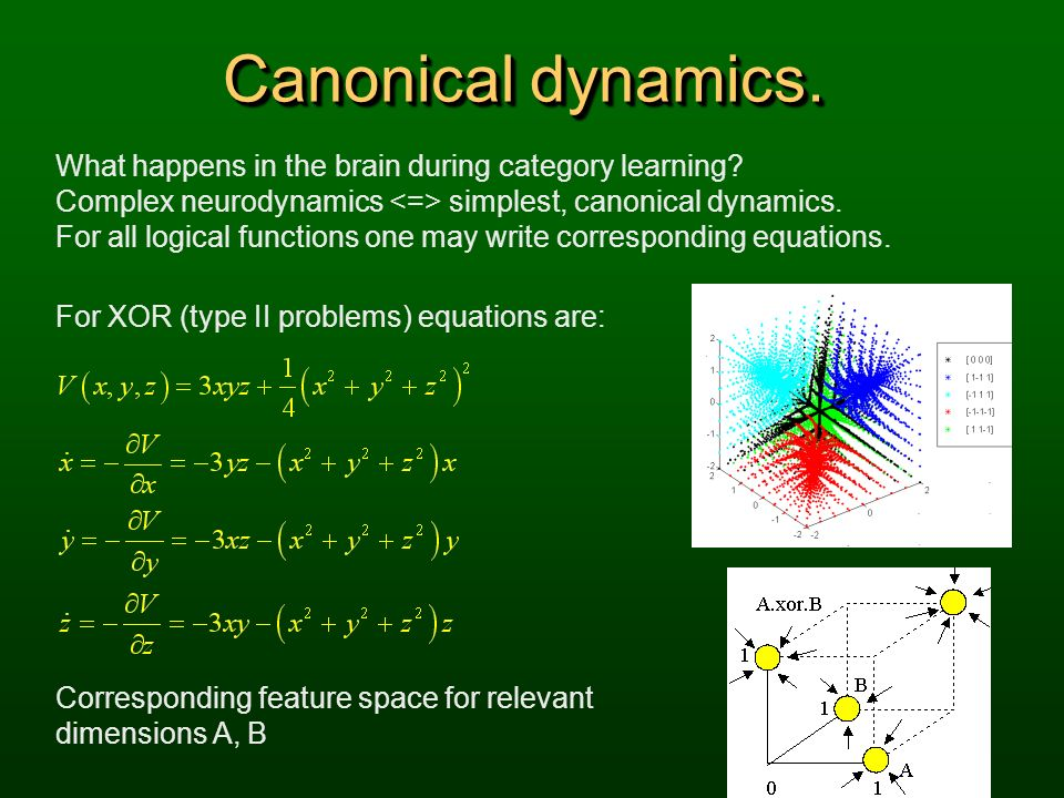 Canonical dynamics. What happens in the brain during category learning Complex neurodynamics <=> simplest, canonical dynamics.
