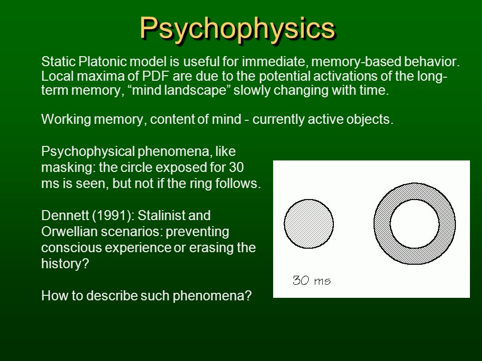 Psychophysics Static Platonic model is useful for immediate, memory-based behavior.