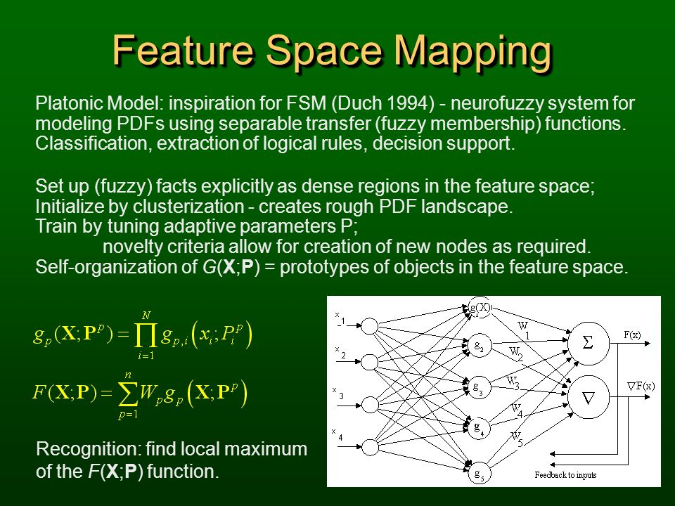 Feature Space Mapping