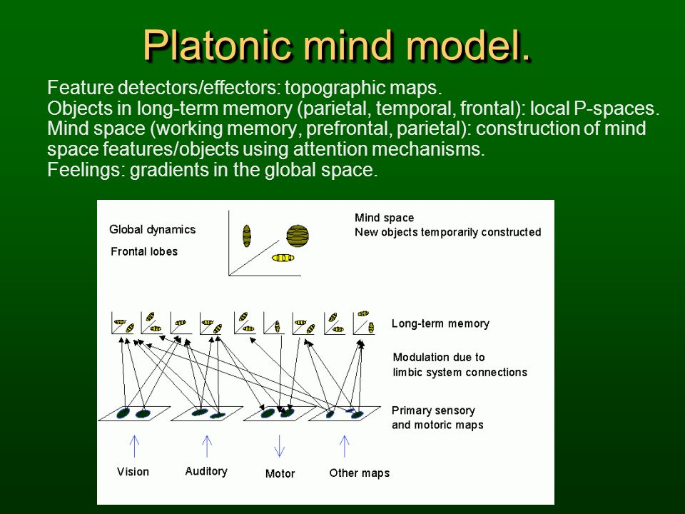 Platonic mind model. Feature detectors/effectors: topographic maps.