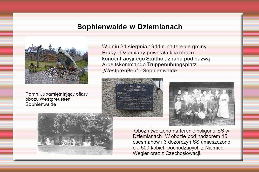 Sophienwalde w Dziemianach