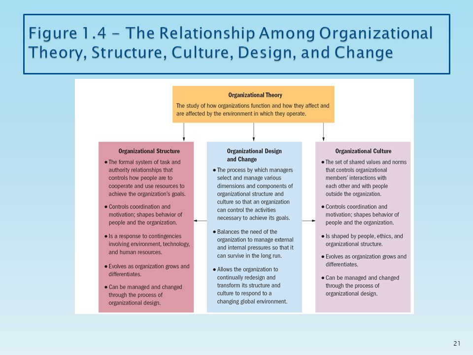 Is There a Relationship Between Organizational Structure and Culture?