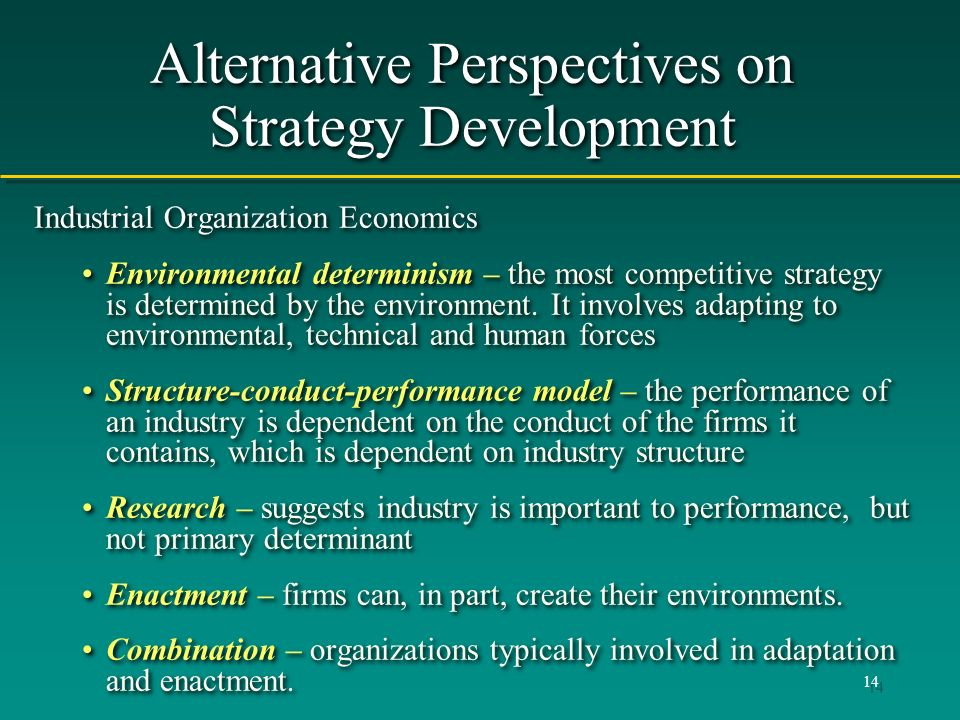 Alternative Perspectives on Strategy Development