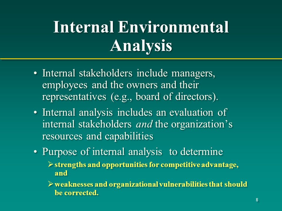 Internal Environmental Analysis
