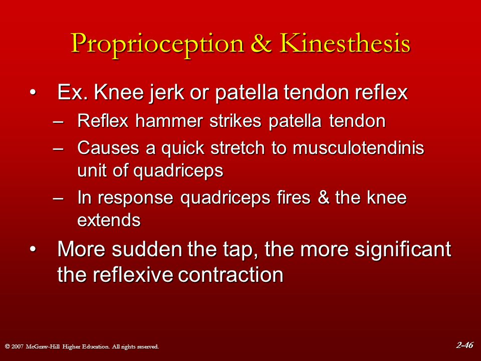 what is significant about kinesthesis What is kinesthesis and vestibular sense kinesthetic & vestibular senses flashcards | quizlet kinesthesis is the sense that gives us information about the location of our body parts with respect to each other and allow us to perform movements.