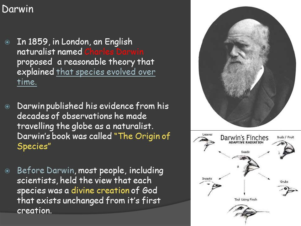a research on charles darwin and darwinism Charles darwin: charles darwin  biography of charles robert darwin wolfram research - eric weisstein's world of scientific biography.