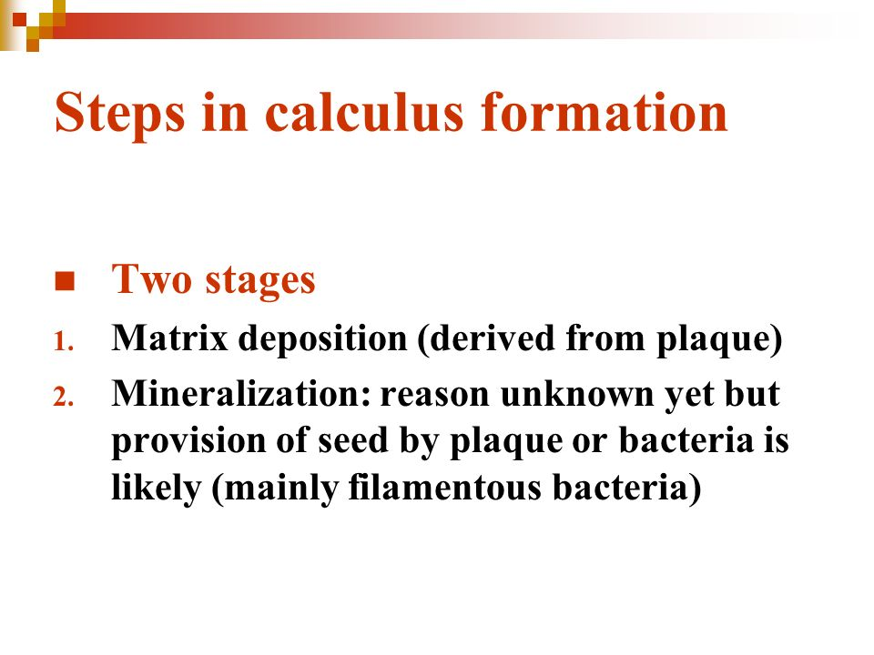calculus formation relationship with plaque Definitive determination of clinical relationship between dental plaque and calculus by s singh j h manhold a r volpe a number of previous studies1-8 have indicated a direct relationship between the existence of dental plaque and the formation of dental calculus however, hazen,  the time-calculus-plaque relationship may be.