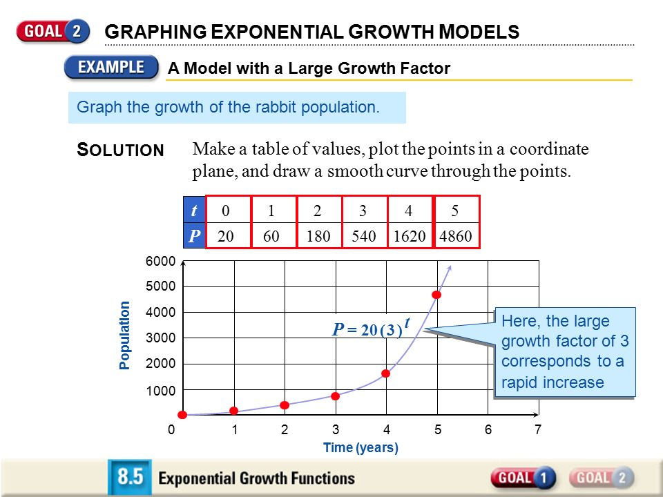 How Do You Plot an Exponential Function Curve on Microsoft Excel?