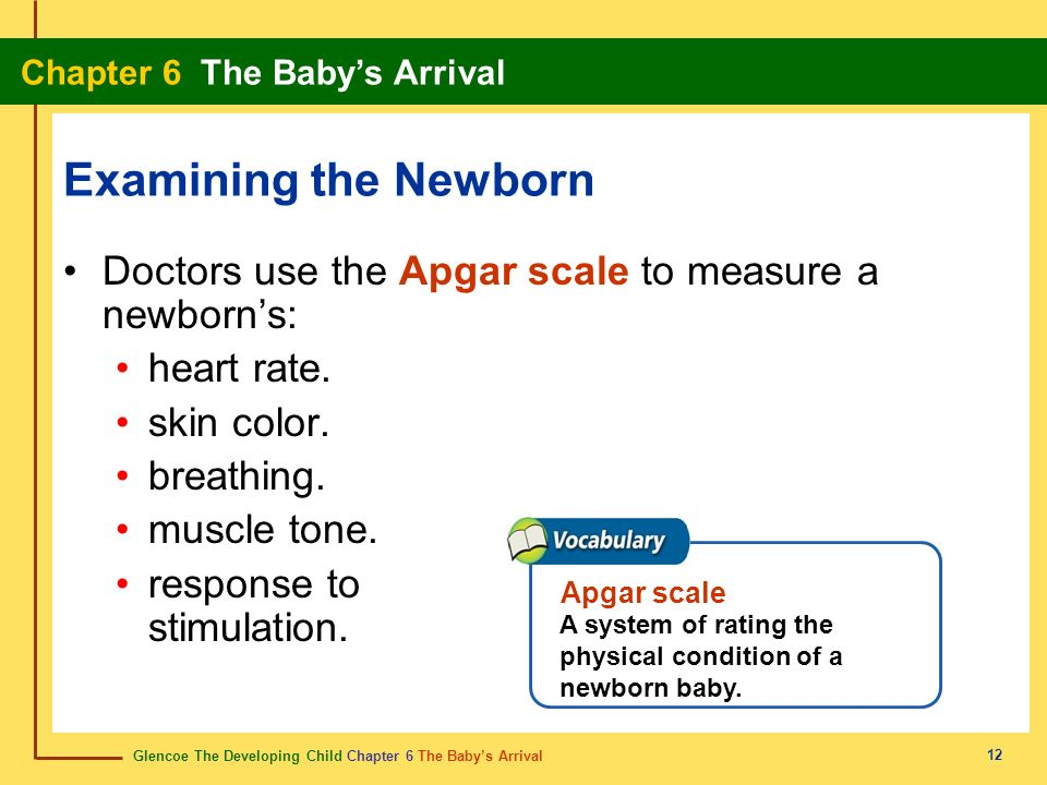 Examining the NewbornDoctors use the Apgar scale to measure a newborn's: heart rate. skin color. breathing.