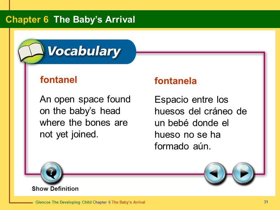 fontanel fontanela. An open space found on the baby's head where the bones are not yet joined.