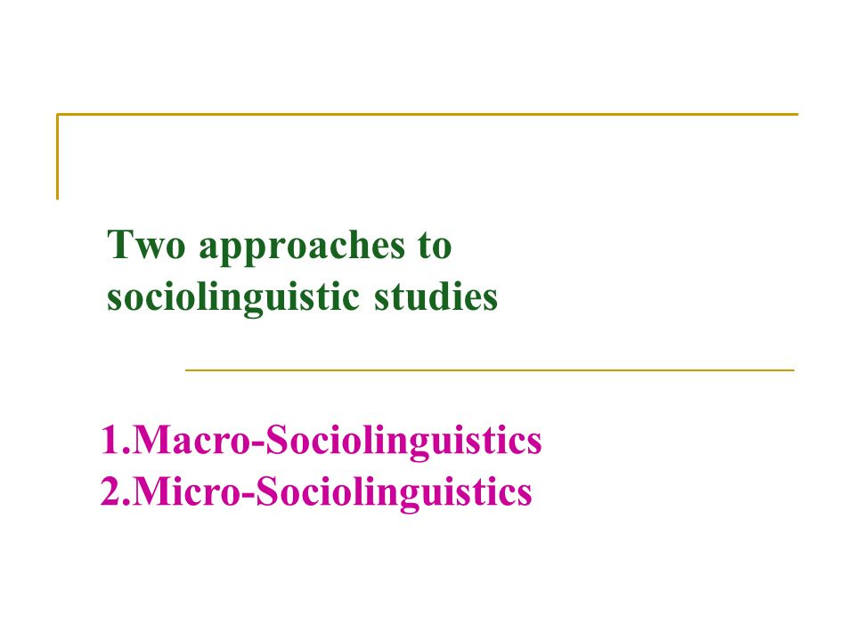 """macro and micro sociolinguistics Sociolinguistic units: the speech community, the dialect or language area, and   influences at both macro- and microlevels, leading to highly complex, """"messy""""."""