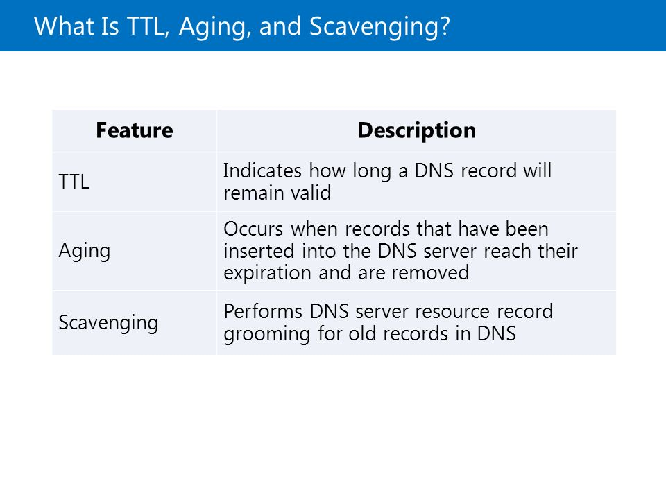 how to find ttl of dns records