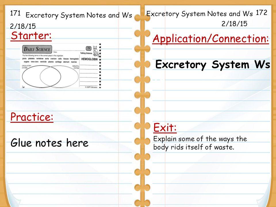 excretory system in invertebrates pdf