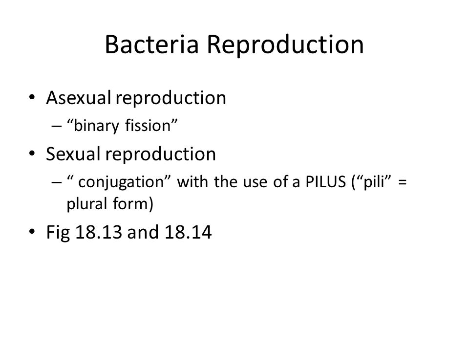 Chapter 18.2: Archaebacteria and Eubacteria - ppt download