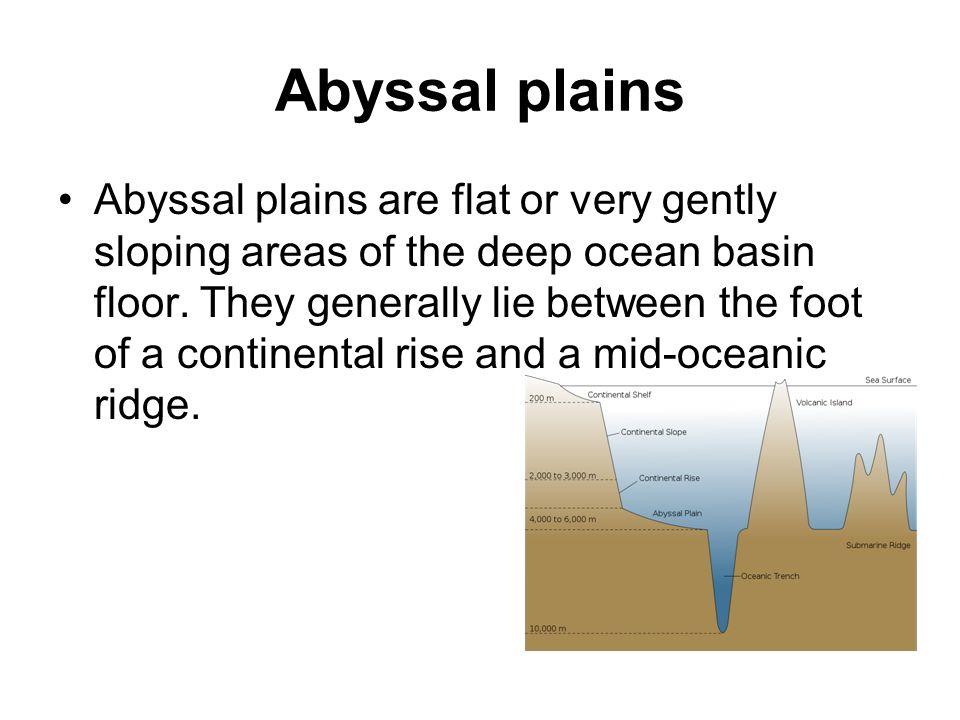 Ocean Topography Main Features. - ppt video online download