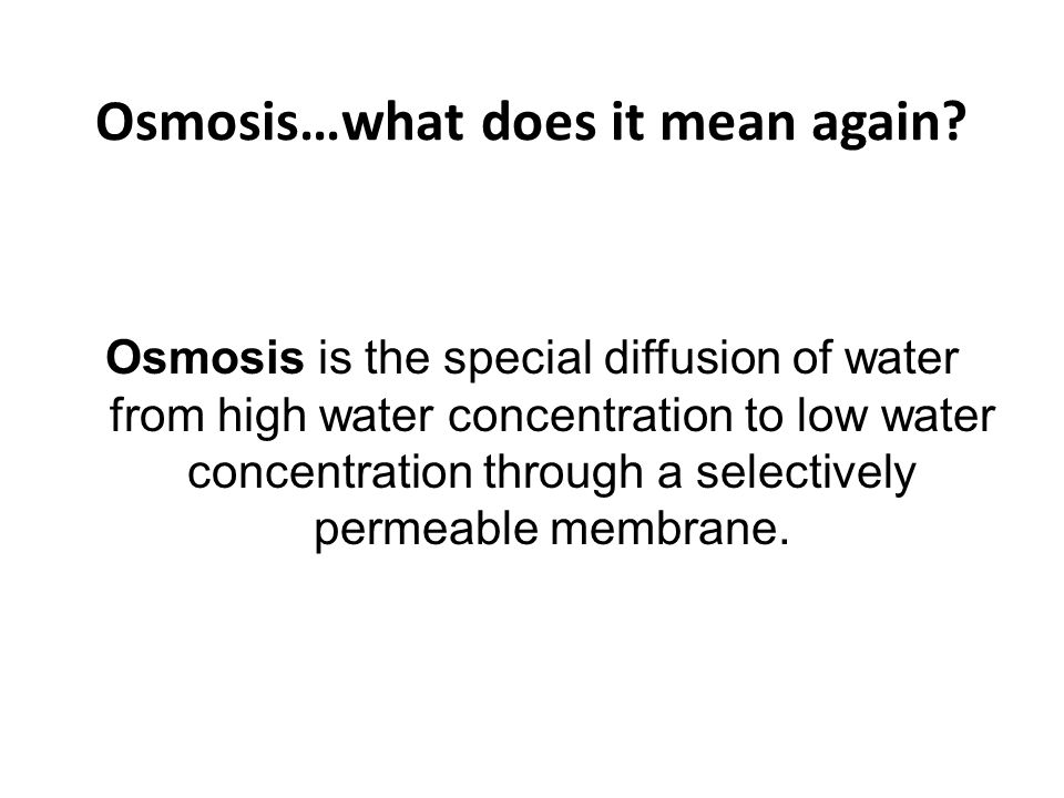 potato osmosis lab discussion