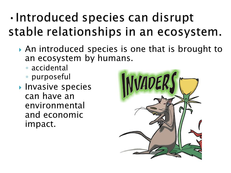 species area relationship ecology and environment