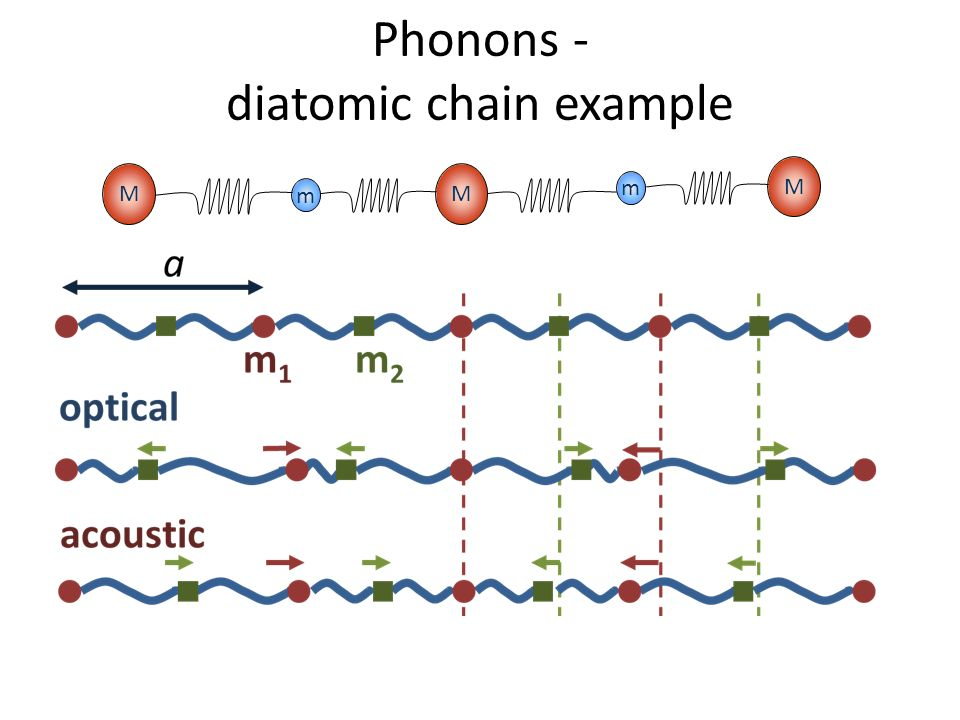 Phonons - diatomic chain example