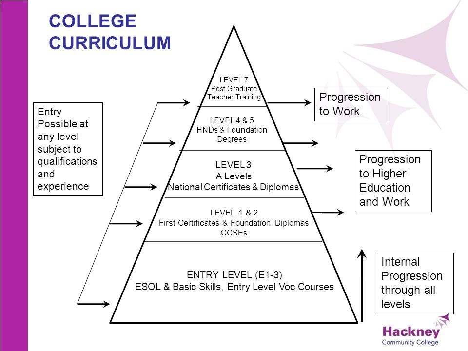 college curriculum progression the system video online download all levels of degrees
