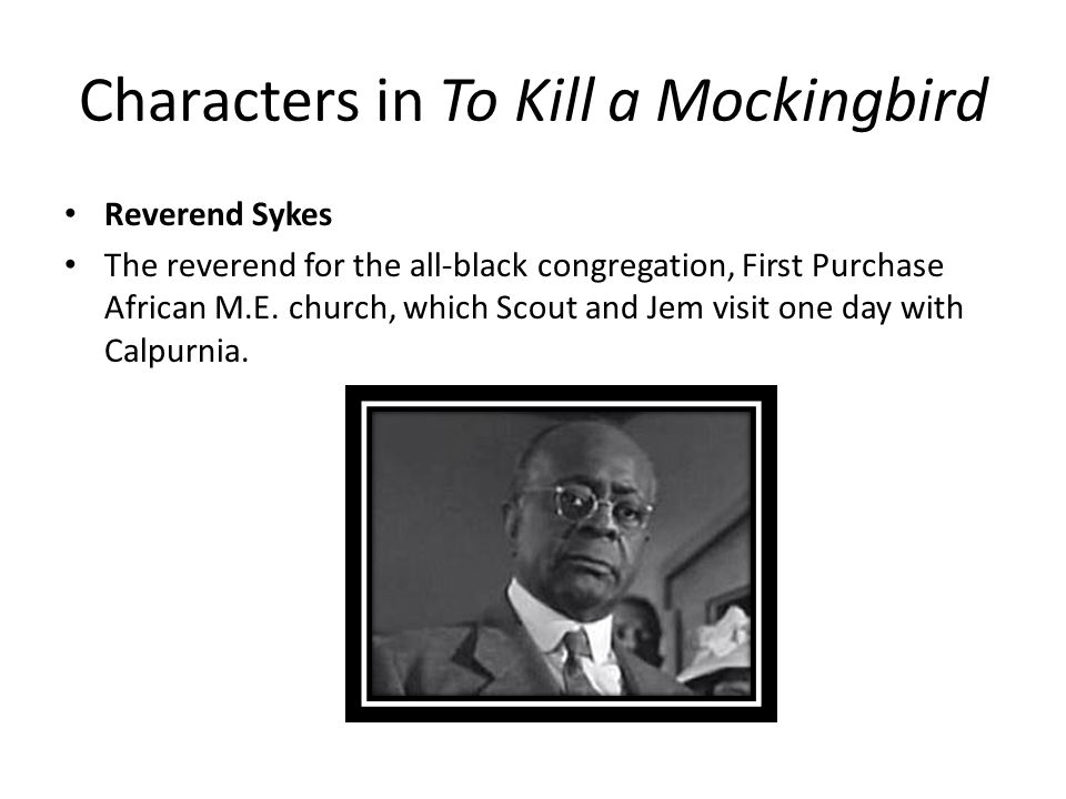 calpurnia s character in to kill a Need help on characters in harper lee's to kill a mockingbird check out our detailed character descriptions from the creators of sparknotes.
