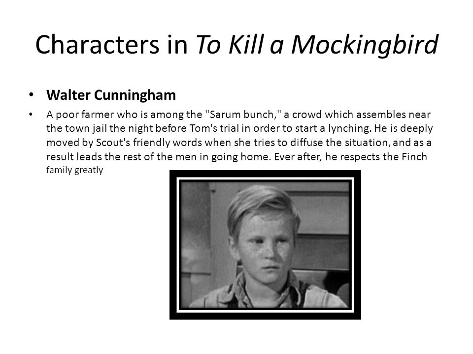 To Kill a Mockingbird Scout Finch