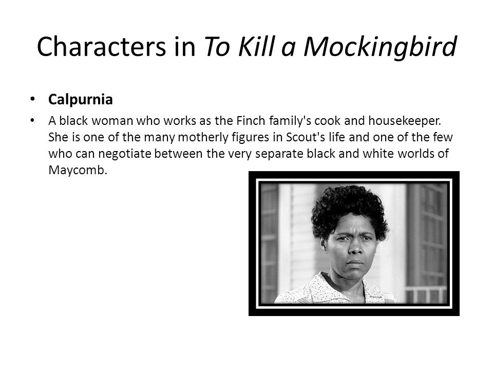 calpurnia s character in to kill a Atticus finch in harper lee's to kill a mockingbird but their family is a long way from the extreme poverty that surrounds many of the book's characters with their maid, calpurnia, one of the few black residents of maycomb who knows how to read and write.