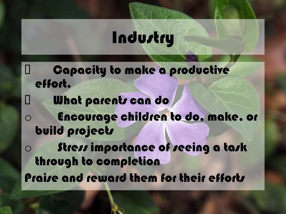 Industry ü Capacity to make a productive effort. ü What parents can do