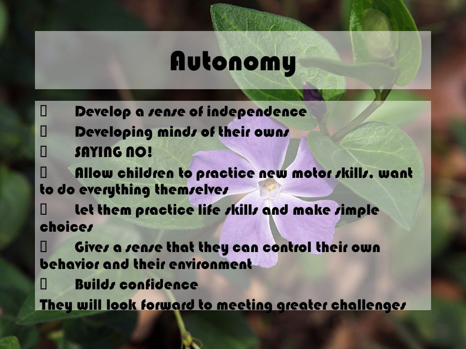 Autonomy ü Develop a sense of independence