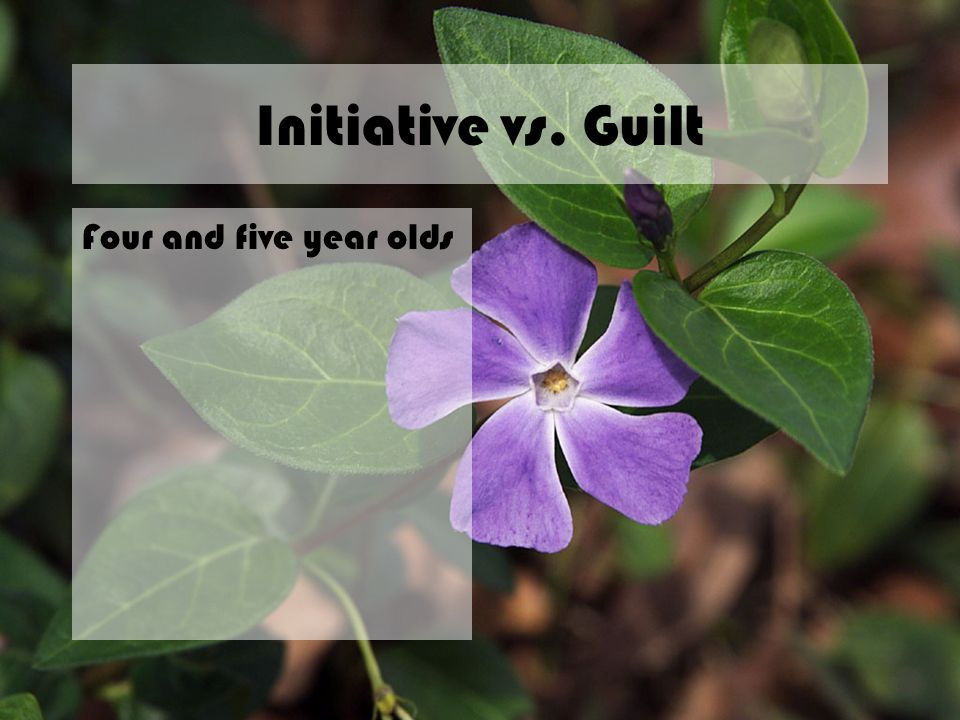 Initiative vs. Guilt Four and five year olds