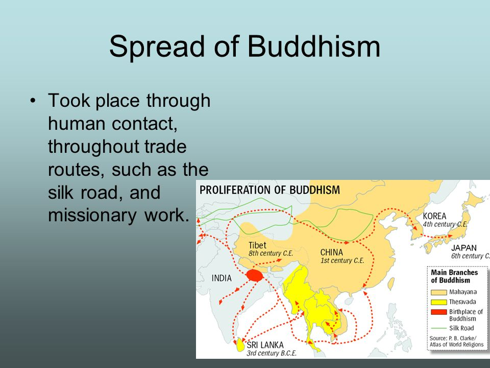 spread of buddhism A wave of conversion began, and buddhism spread not only through india, but also internationally ceylon, burma, nepal, tibet, central asia, china, and japan are just some of the regions where the middle path was widely accepted.