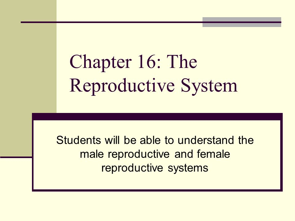 Ch 25 the reproductive systems and