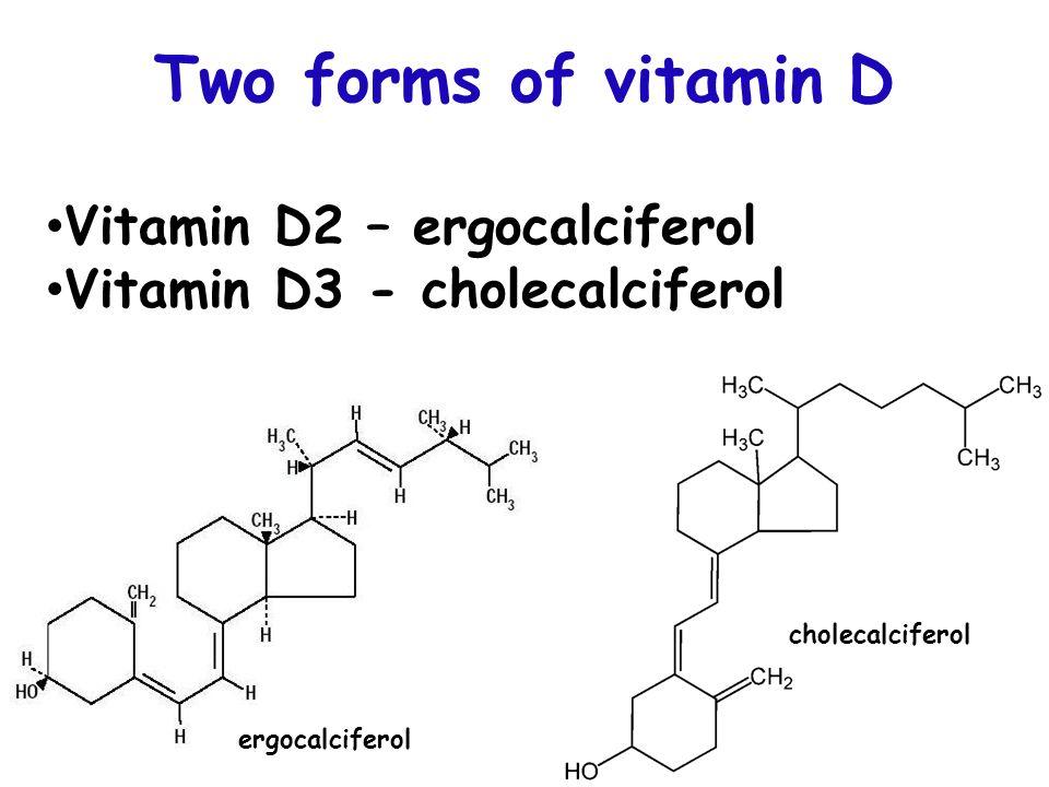 Active form of vitamin D - ppt video online download