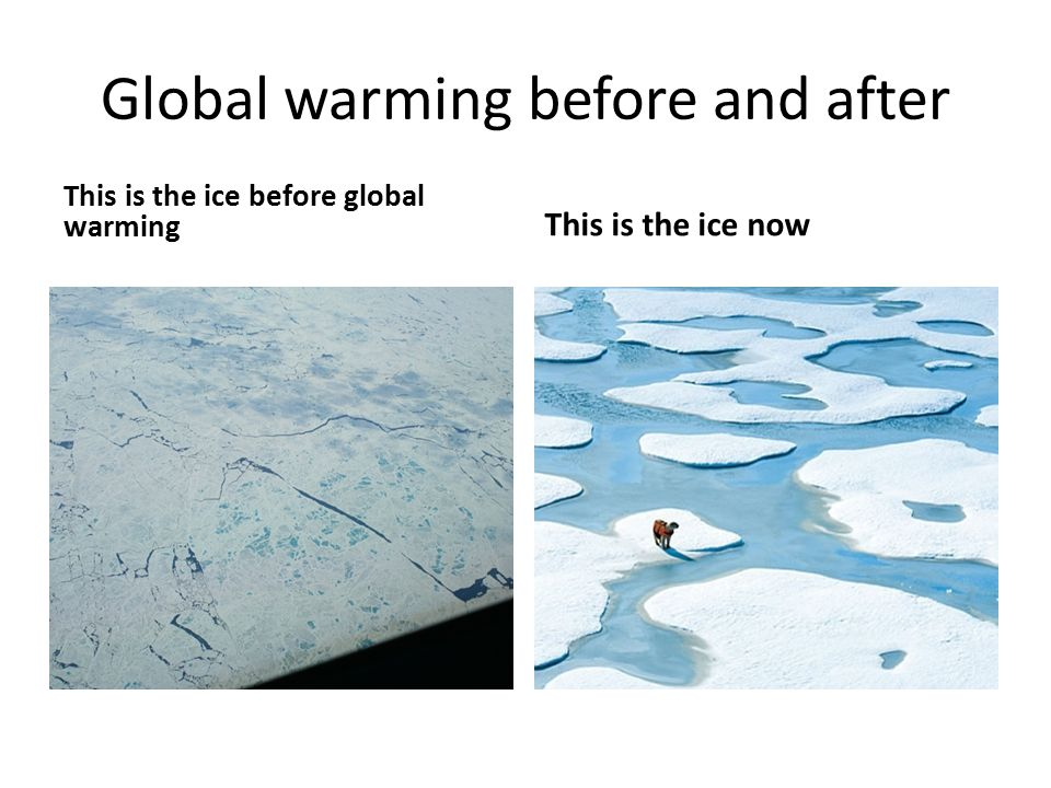 a look at global warming and its effects Vital signs of the planet: global climate change and global warming current news and data streams about global warming and climate change from nasa.