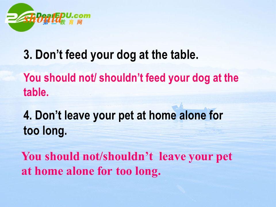Unit 6 Pets Grammar Ppt Download