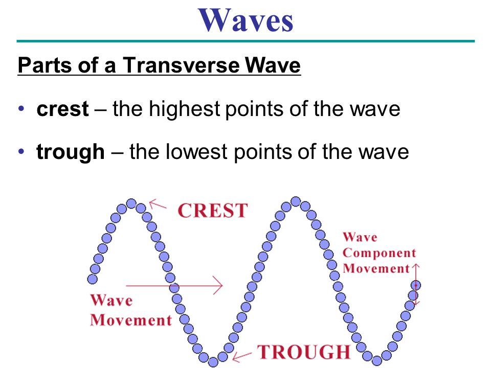 Waves Parts of a Transverse Wave