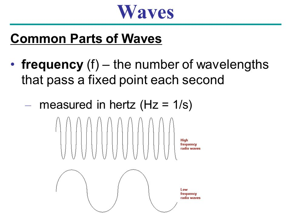 Waves Common Parts of Waves