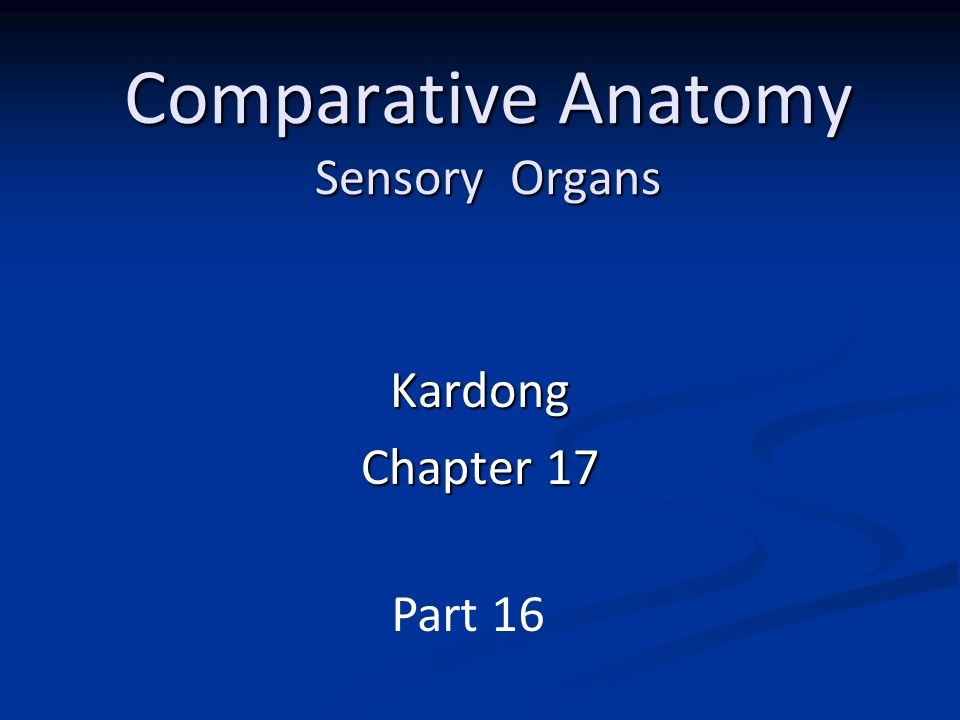 Comparative anatomy sensory organs ppt video online download comparative anatomy sensory organs ccuart Image collections