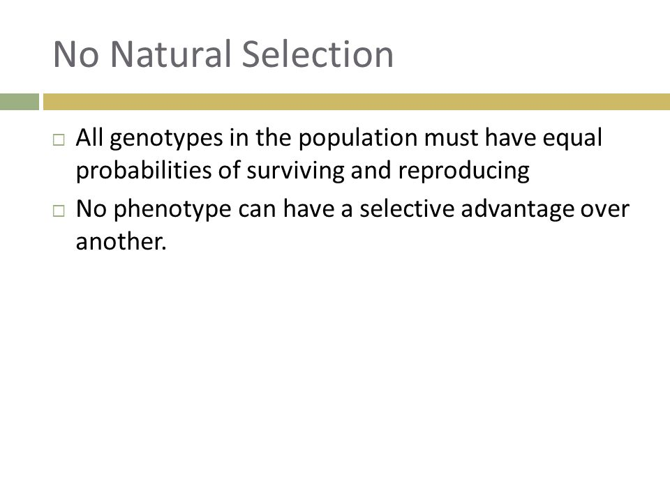 How Does Genetic Drift Relate To Natural Selection