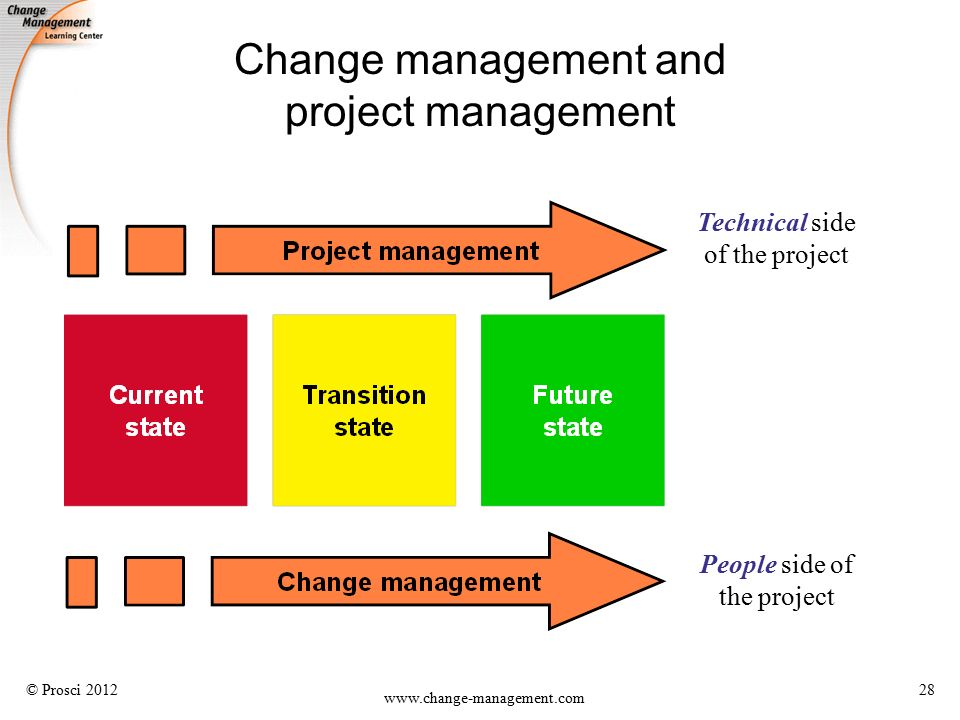 project and change management Bruin financial are specialist recruiters for project and change management jobs, project manager jobs, programme manager jobs, pmo & consulting jobs.