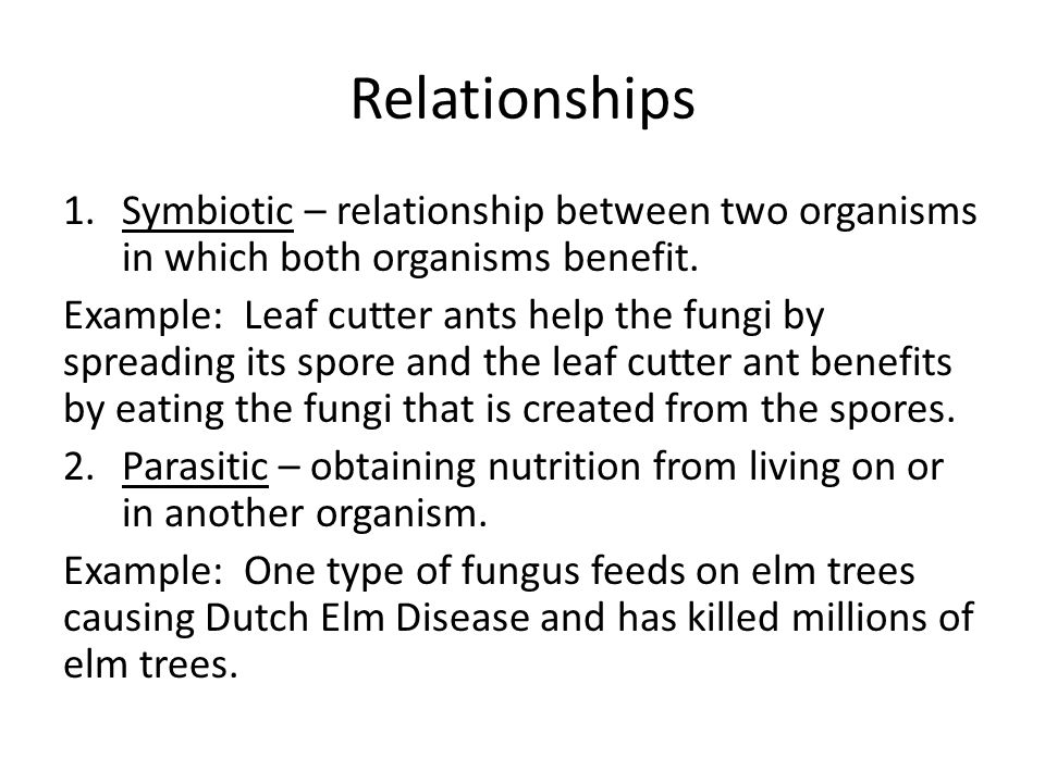 relationship between attini leaf cutter ants and fungi