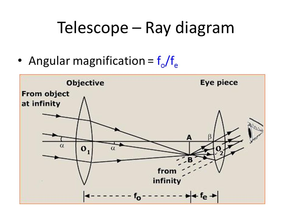 how to draw ray diagram of compound microscope